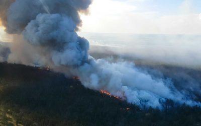 Fire Suppression Services in BC