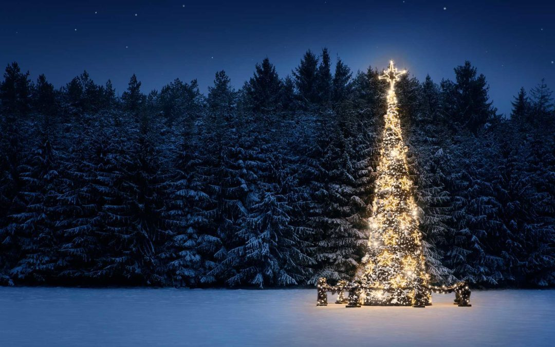 season-greetings-blog